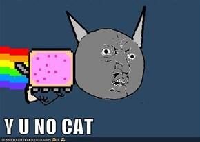Y U NO CAT