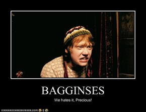 BAGGINSES