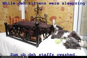While deh kittens were sleepzing  Sum ob deh staffz cwashed.