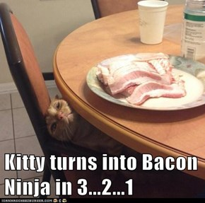 Kitty turns into Bacon Ninja in 3...2...1