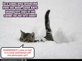 At Winter Splortz 2013, the younger students were allowed to play outside for a short time under the watchful eyes of the ThunderCat Brothers and Ninja Tigers. This was the first time in the snow for most of the kitties, and all had great FUN!!