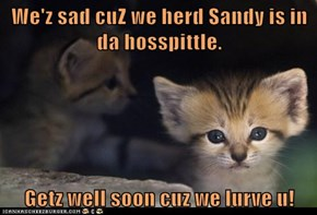 We'z sad cuZ we herd Sandy is in da hosspittle.  Getz well soon cuz we lurve u!