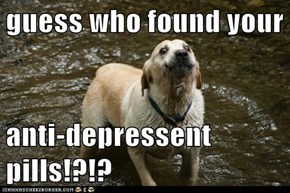 guess who found your  anti-depressent pills!?!?