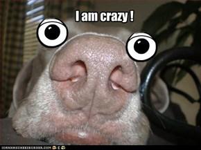 I am crazy !