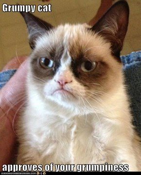Grumpy cat  approves of your grumpiness