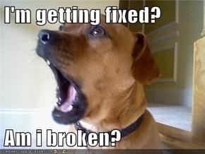 I'm getting fixed?  Am i broken?