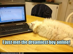 On the Intarwebz, nobody knows you're a kitteh.