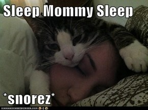Sleep Mommy Sleep  *snorez*