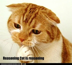 Reasoning Cat
