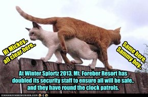 The safety for all Winter Splortz participants is taken very seriously..