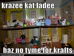 krazee kat ladee   haz no tyme for krafts