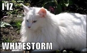 I IZ  WHITESTORM
