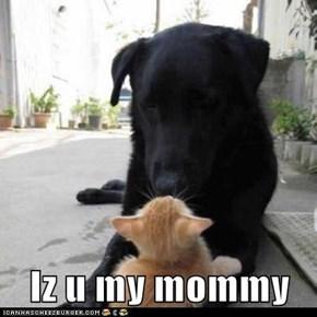 Iz u my mommy