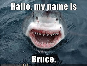 Hallo, my name is  Bruce.