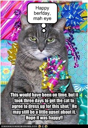 burfday wishes fer Catmom