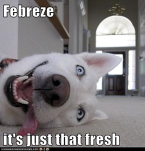 Febreze  it's just that fresh