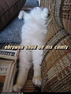 ebrywun  shud  be  dis  comfy