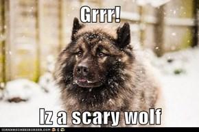 Grrr!  Iz a scary wolf