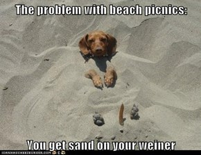 The problem with beach picnics:  You get sand on your weiner