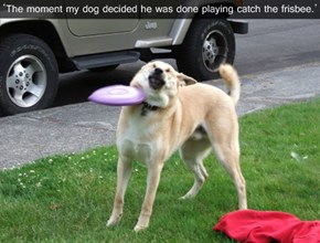 Playing Catch FAIL