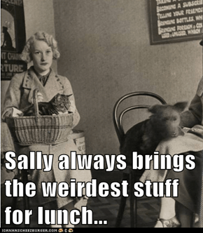 Sally always brings the weirdest stuff for lunch...