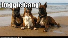 Doggie Gang