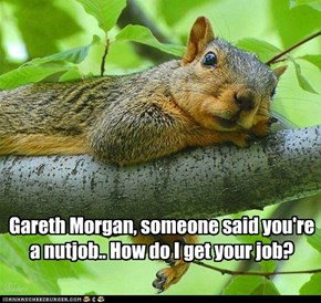 Gareth Morgan, someone said you're a nutjob.. How do I get your job?