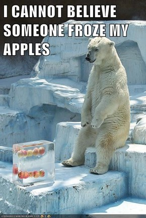 I CANNOT BELIEVE SOMEONE FROZE MY APPLES