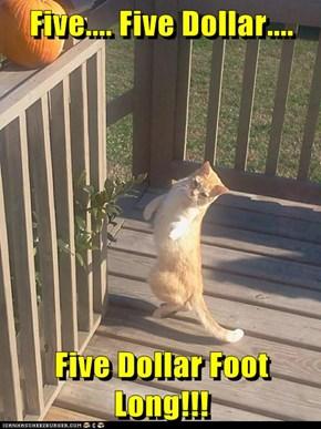 Five.... Five Dollar....  Five Dollar Foot Long!!!