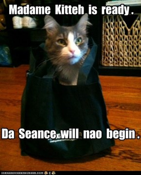 Madame  Kitteh  is  ready .