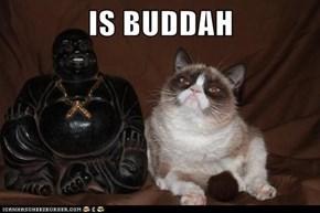 IS BUDDAH