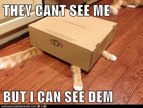 THEY CANT SEE ME   BUT I CAN SEE DEM
