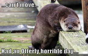 ...can't move...  Had an Otterly horrible day....
