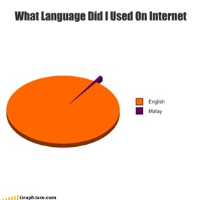 What Language Did I Used On Internet