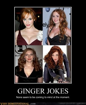 GINGER JOKES