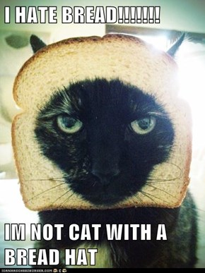 I HATE BREAD!!!!!!!  IM NOT CAT WITH A BREAD HAT