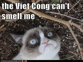 the Viet Cong can't smell me