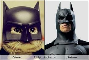 Catman Totally Looks Like Batman