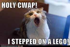 HOLY CWAP!  I STEPPED ON A LEGO!