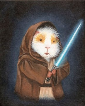 May the Fuzz be With You