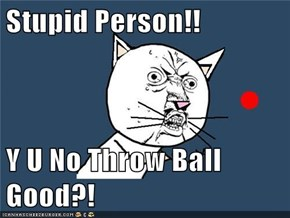 Stupid Person!!  Y U No Throw Ball Good?!
