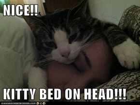 NICE!!  KITTY BED ON HEAD!!!