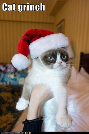 Cat grinch