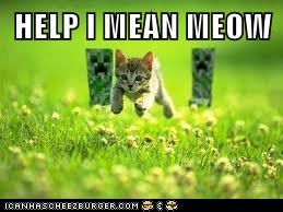 HELP I MEAN MEOW