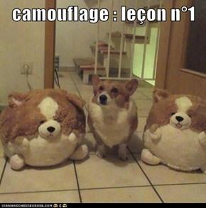 camouflage : leçon n°1