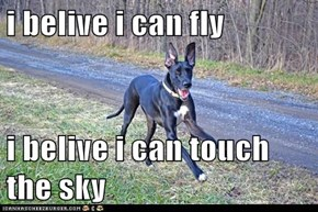i belive i can fly  i belive i can touch the sky