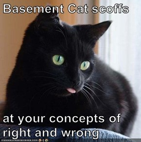 Basement Cat scoffs   at your concepts of right and wrong