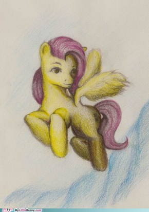 Fluttershy on frozen lands