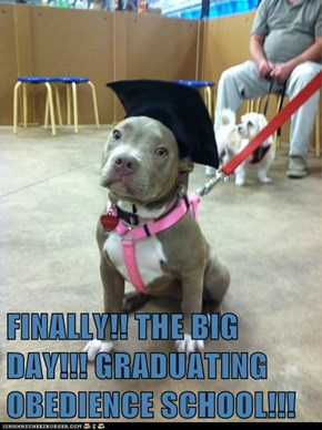 FINALLY!! THE BIG DAY!!! GRADUATING OBEDIENCE SCHOOL!!!