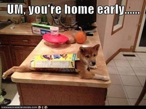 UM, you're home early......
